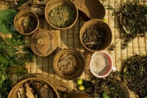 Top Traditional Healer